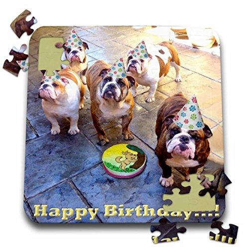 Edmond Hogge Jr Birthdays - English Bulldog Birthday - 10x10 Inch Puzzle pzl_39567_2