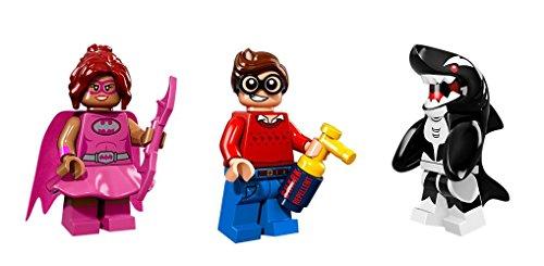 LEGO Dick Grayson Orca Batgirl Pink Minifigures Batman Movie
