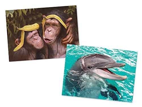 Melissa Doug Animals Jigsaw Puzzles Set - Chimps and Dolphin 60 pcs each