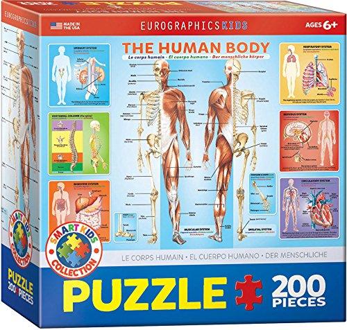 EuroGraphics Human Body Jigsaw Puzzle 200-Piece