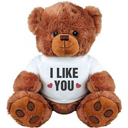I Like You Valentines Day Gift Medium Plush Teddy Bear