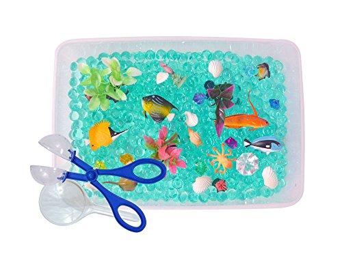 Revelae Discovery Box for Sensory Play - Ocean Exploration Theme