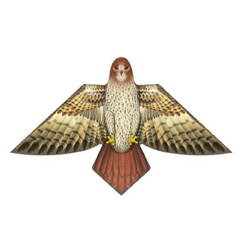 X-Kites Birds of Feather - 54 inch Hawk Kite