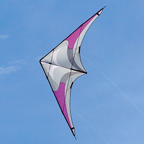 Silver Fox Dual line Stunt Kite