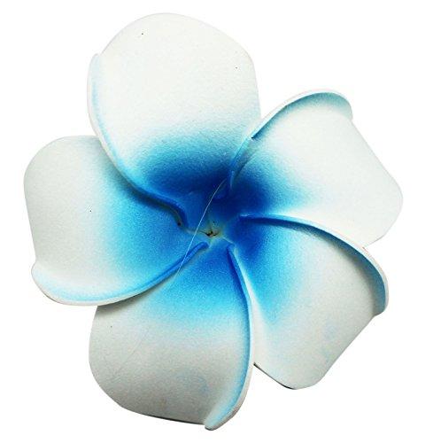 Tropical Flower Fashion Hair Barrette White and Light Blue