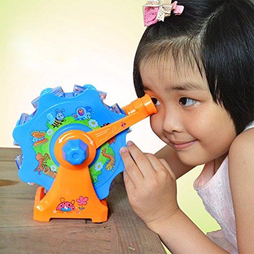 Lanlan 1 PCS Kids Ferris Wheel Bug Viewer Nature Exploration Tool Science Educational Toys Color Random