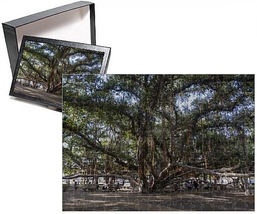 Photo Jigsaw Puzzle of Banyan tree Lahaina Maui Hawaii United States of America Pacific