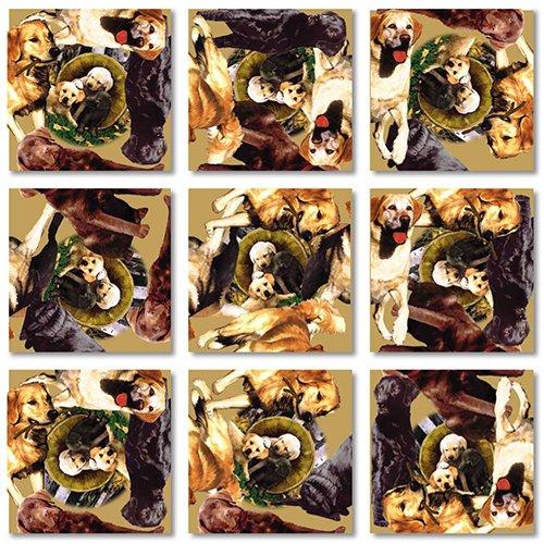 B Dazzle Retrievers Scramble Squares 9 Piece Puzzle
