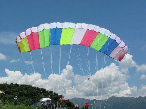 Eye Catching Pandora 3m Dual-line Control Parafoil Parachute Stunt Sport Nylon Kite with Handle String Outdoor Park Beach Garden Fun
