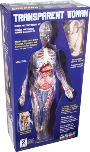 Lindberg Transparent Woman figure model kit