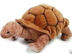 Lelly 30 cm Land Turtle Stuffed Toy by Lelly