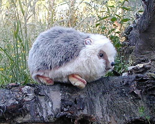 11 Hedgehog Stuffed Toy Animal from Fiesta