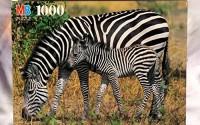 1000pc-Zebras-Africa-Puzzle-4.jpg