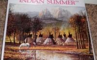 Indian-Summer-Jigsaw-Puzzle-550-Interlocking-Pieces-16-x20-1983-From-an-Original-Painting-By-Bill-Shaddix-7.jpg