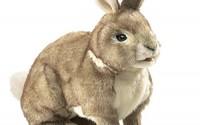 Folkmanis-Cottontail-Rabbit-Hand-Puppet-4.jpg