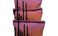 Catus-Sun-Set-Standard-Custom-Corn-Hole-Bags-Cornhole-Bags-30.jpg