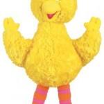 Baby-Big-Bird-11-Sesame-Street-by-Gund-Toy-18.jpg