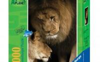 Ravensburger-Animal-Planet-Lions-1000-Pieces-Puzzle-19.jpg