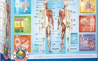 EuroGraphics-Human-Body-Jigsaw-Puzzle-200-Piece-8.jpg